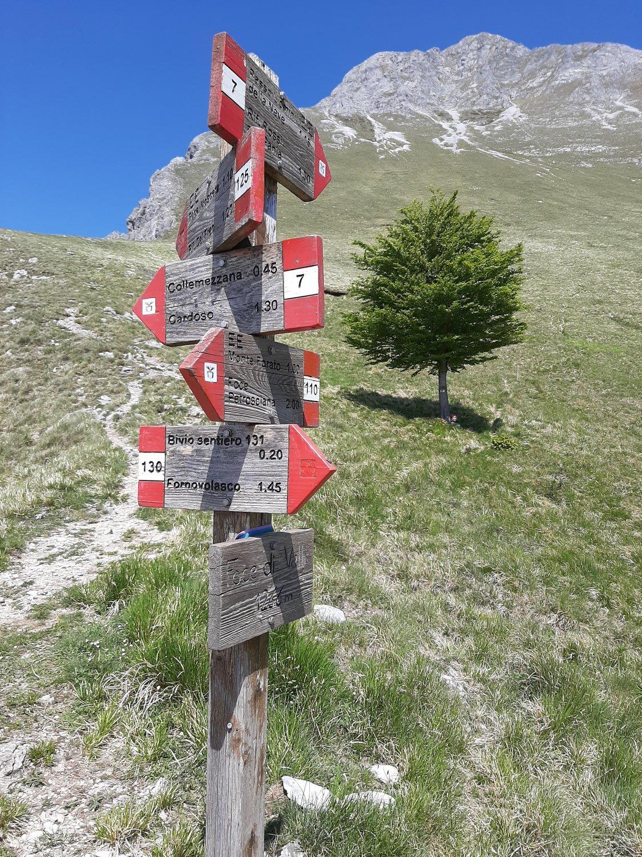 Foce di Valli, sullo sfondo Pania della Croce