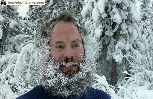 barba-ghiacciata.jpg