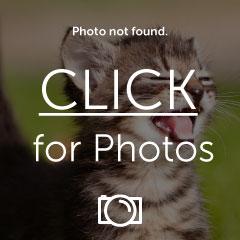 image_zpsygsv4cnk.jpg