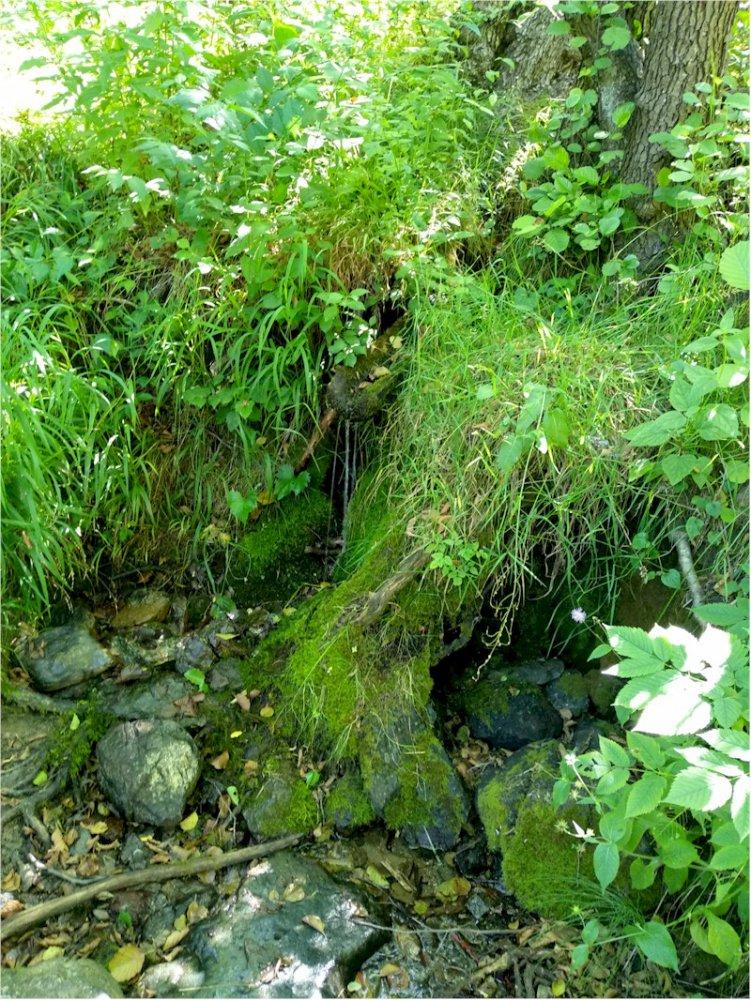 Lago dei gulli 08.jpg