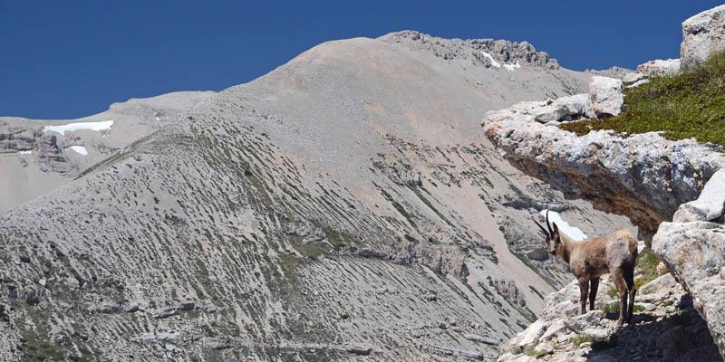 Monte_Pizzone_Montinvisibili.jpg