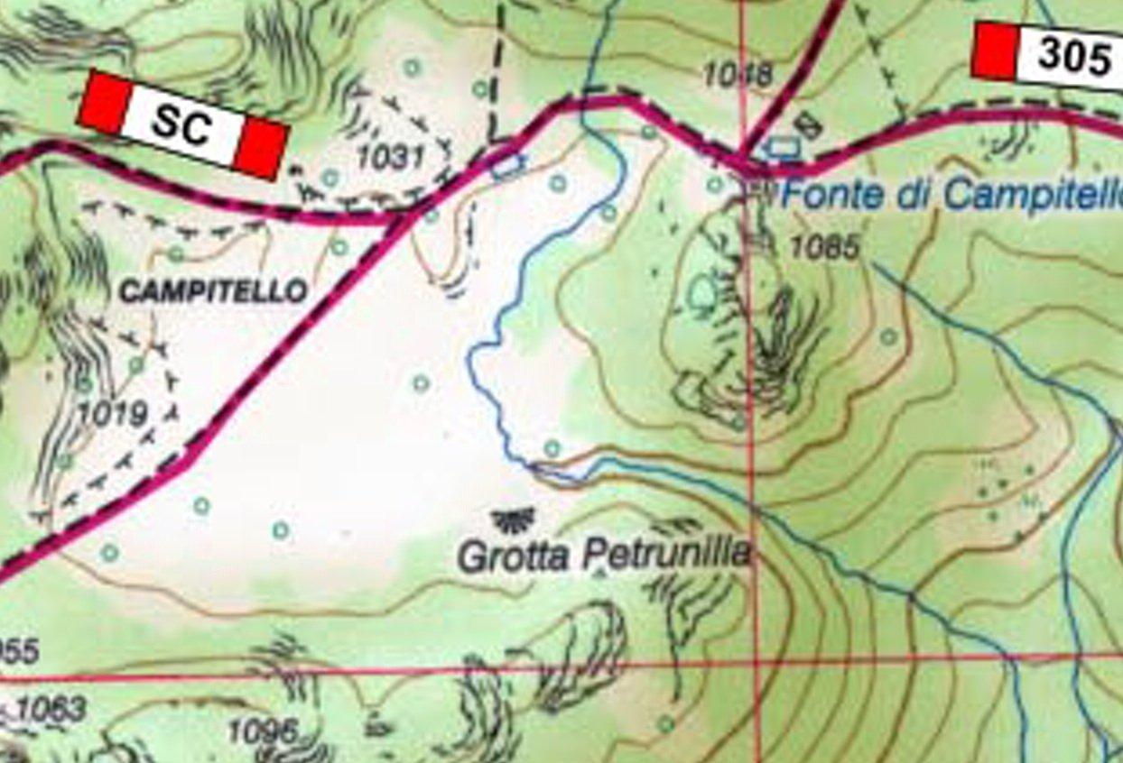 Petrunilla.jpg